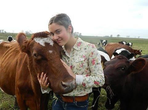 Cattle Stockmanship for Easier Handling